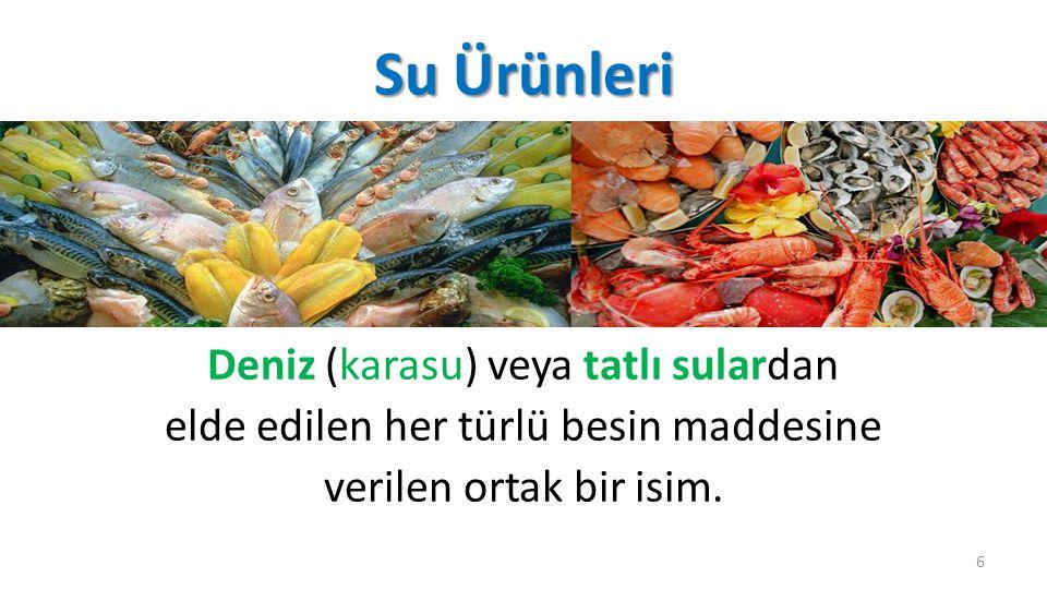 Su Ürünleri Deniz (karasu) veya tatlı sulardan elde edilen her türlü besin maddesine verilen ortak bir isim.