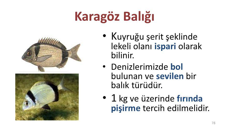 Karagöz Balığı Kuyruğu şerit şeklinde lekeli olanı ispari olarak bilinir. Denizlerimizde bol bulunan ve sevilen bir balık türüdür.