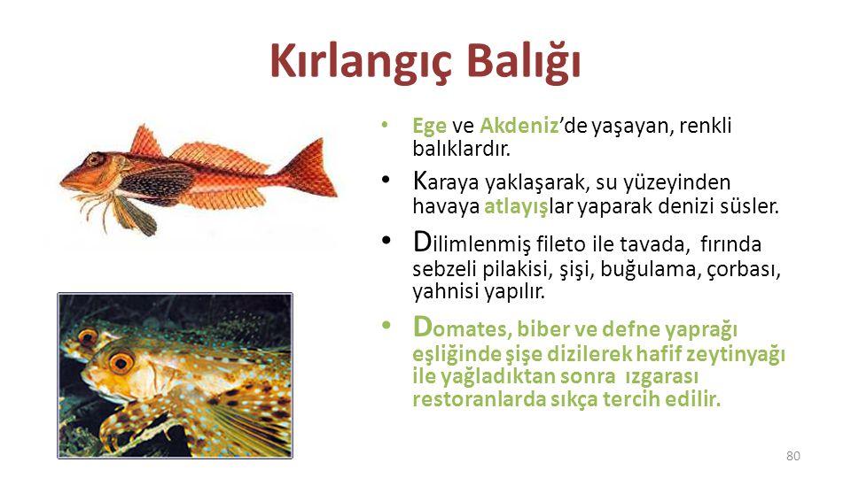 Kırlangıç Balığı Ege ve Akdeniz'de yaşayan, renkli balıklardır. Karaya yaklaşarak, su yüzeyinden havaya atlayışlar yaparak denizi süsler.