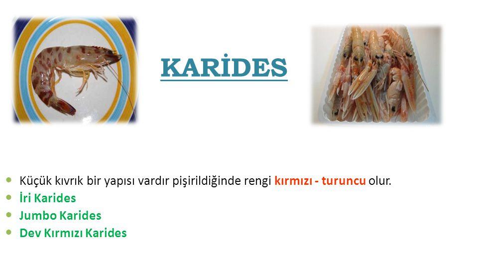 KARİDES Küçük kıvrık bir yapısı vardır pişirildiğinde rengi kırmızı - turuncu olur. İri Karides. Jumbo Karides.