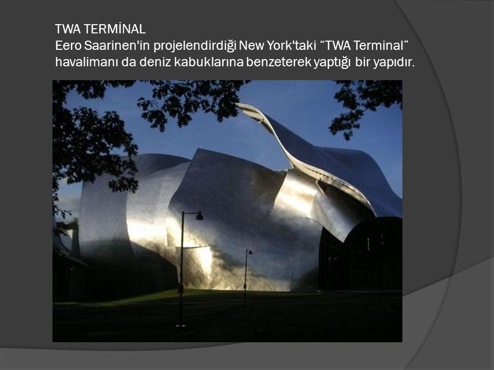 TWA TERMİNAL Eero Saarinen in projelendirdiği New York taki TWA Terminal havalimanı da deniz kabuklarına benzeterek yaptığı bir yapıdır.