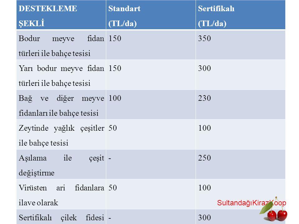 Bodur meyve fidan türleri ile bahçe tesisi 150 350