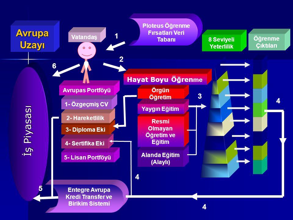 Avrupa Uzayı İş Piyasası 1 2 6 3 4 5 Hayat Boyu Öğrenme
