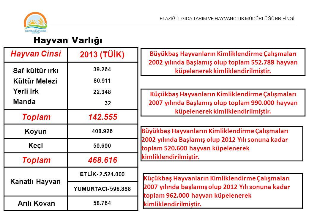 Hayvan Varlığı Hayvan Cinsi 2013 (TÜİK) Toplam 142.555 468.616