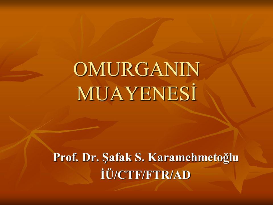 Prof. Dr. Şafak S. Karamehmetoğlu İÜ/CTF/FTR/AD