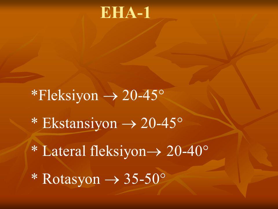 EHA-1 *Fleksiyon  20-45° * Ekstansiyon  20-45°
