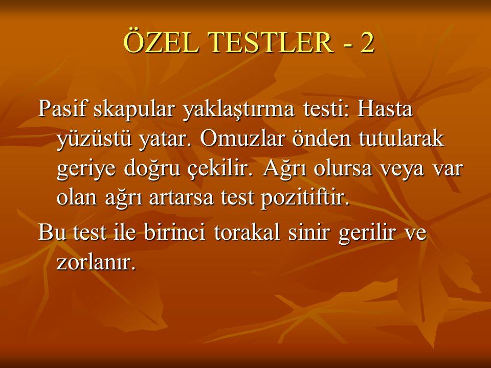 ÖZEL TESTLER - 2