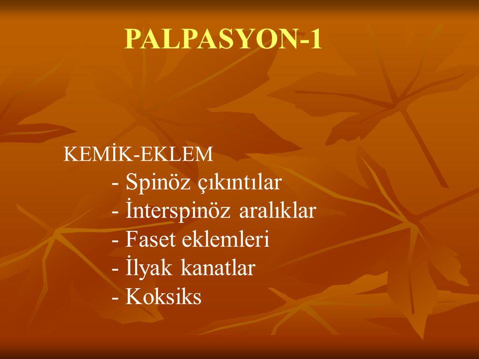 PALPASYON-1 - İnterspinöz aralıklar - Faset eklemleri - İlyak kanatlar