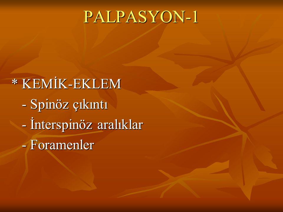 PALPASYON-1 * KEMİK-EKLEM - Spinöz çıkıntı - İnterspinöz aralıklar