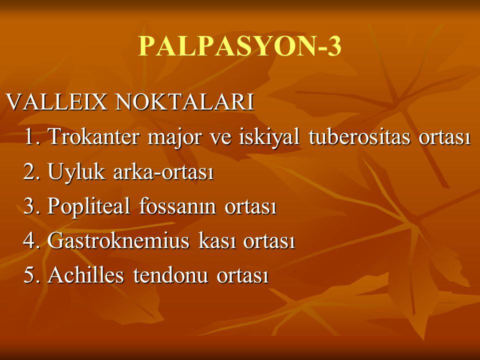 PALPASYON-3