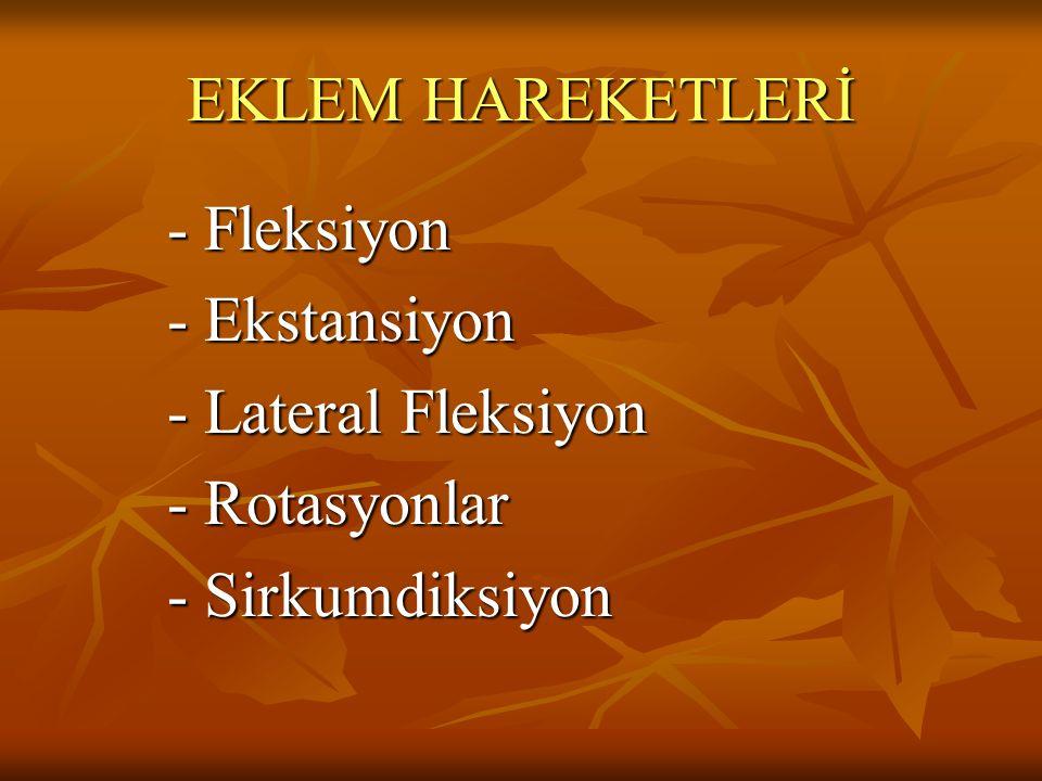 EKLEM HAREKETLERİ - Fleksiyon - Ekstansiyon - Lateral Fleksiyon - Rotasyonlar - Sirkumdiksiyon