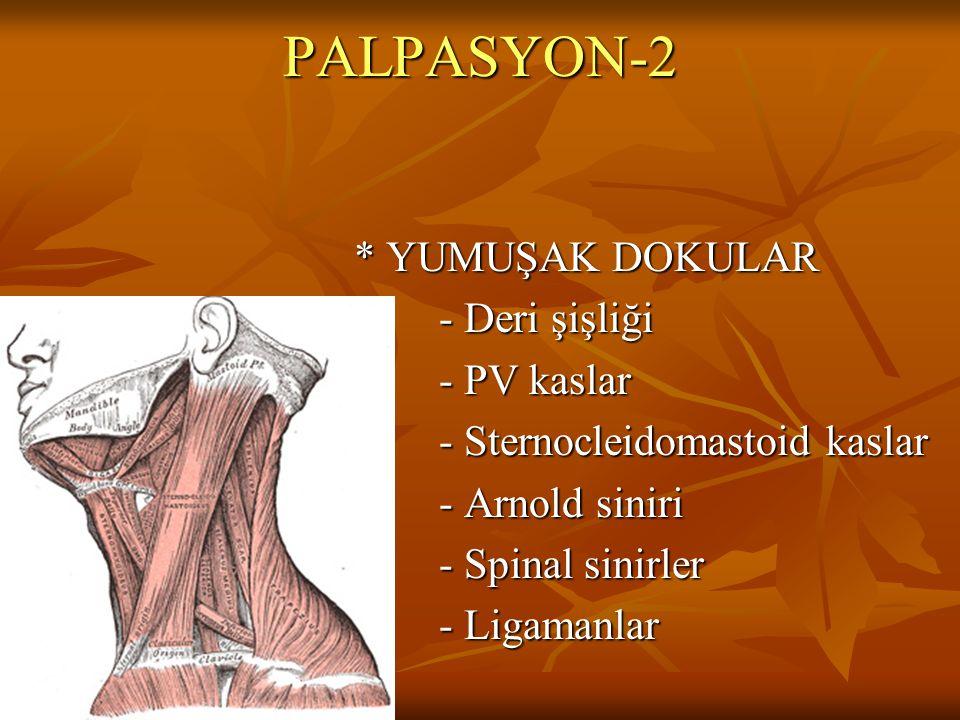 PALPASYON-2 * YUMUŞAK DOKULAR - Deri şişliği - PV kaslar