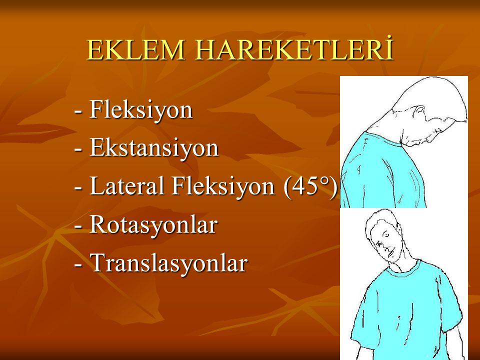 EKLEM HAREKETLERİ - Fleksiyon - Ekstansiyon - Lateral Fleksiyon (45°)
