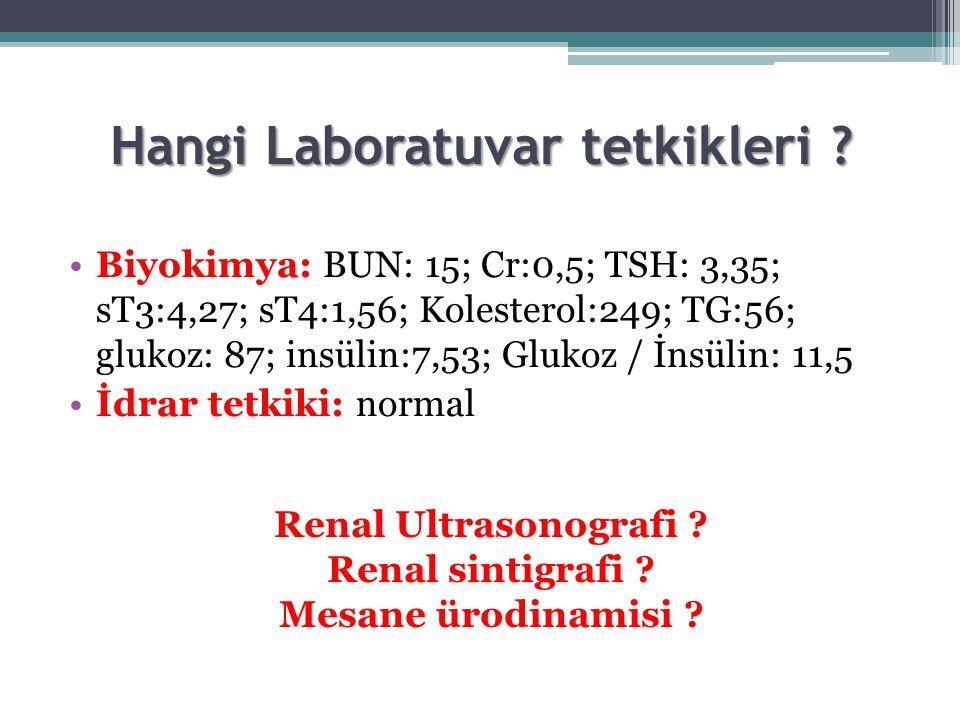 Hangi Laboratuvar tetkikleri