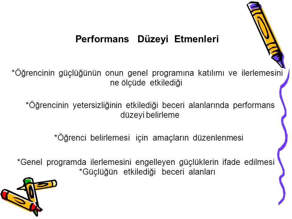 Performans Düzeyi Etmenleri
