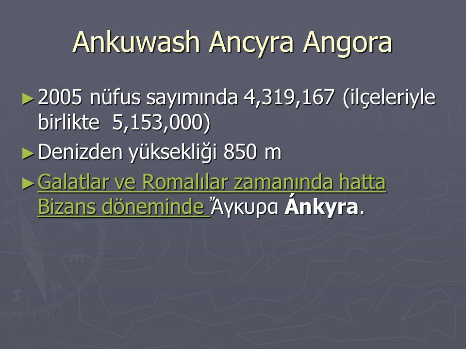 Ankuwash Ancyra Angora