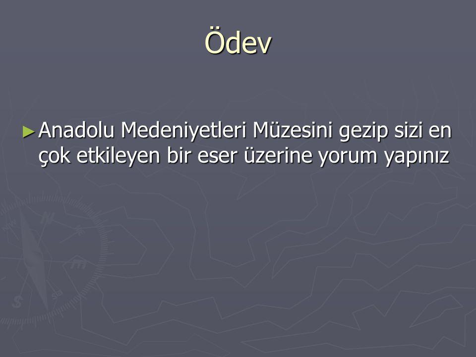 Ödev Anadolu Medeniyetleri Müzesini gezip sizi en çok etkileyen bir eser üzerine yorum yapınız