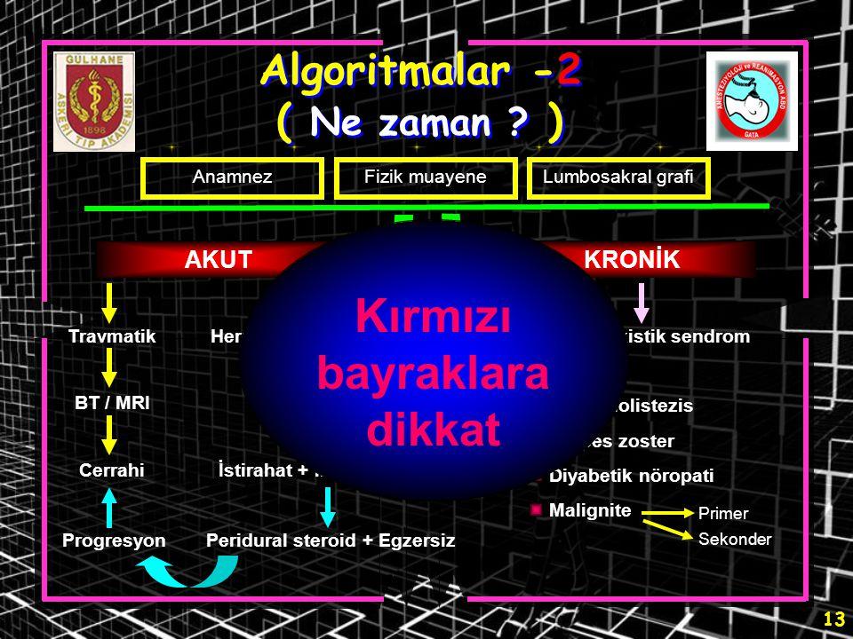 Algoritmalar -2 ( Ne zaman )