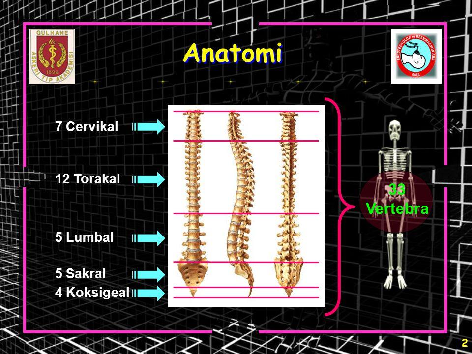 Anatomi 33 Vertebra 7 Cervikal 12 Torakal 5 Lumbal 5 Sakral