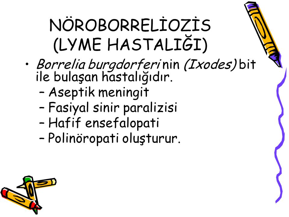 NÖROBORRELİOZİS (LYME HASTALIĞI)
