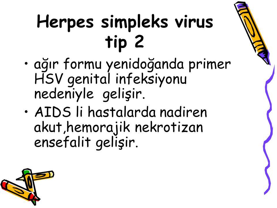 Herpes simpleks virus tip 2
