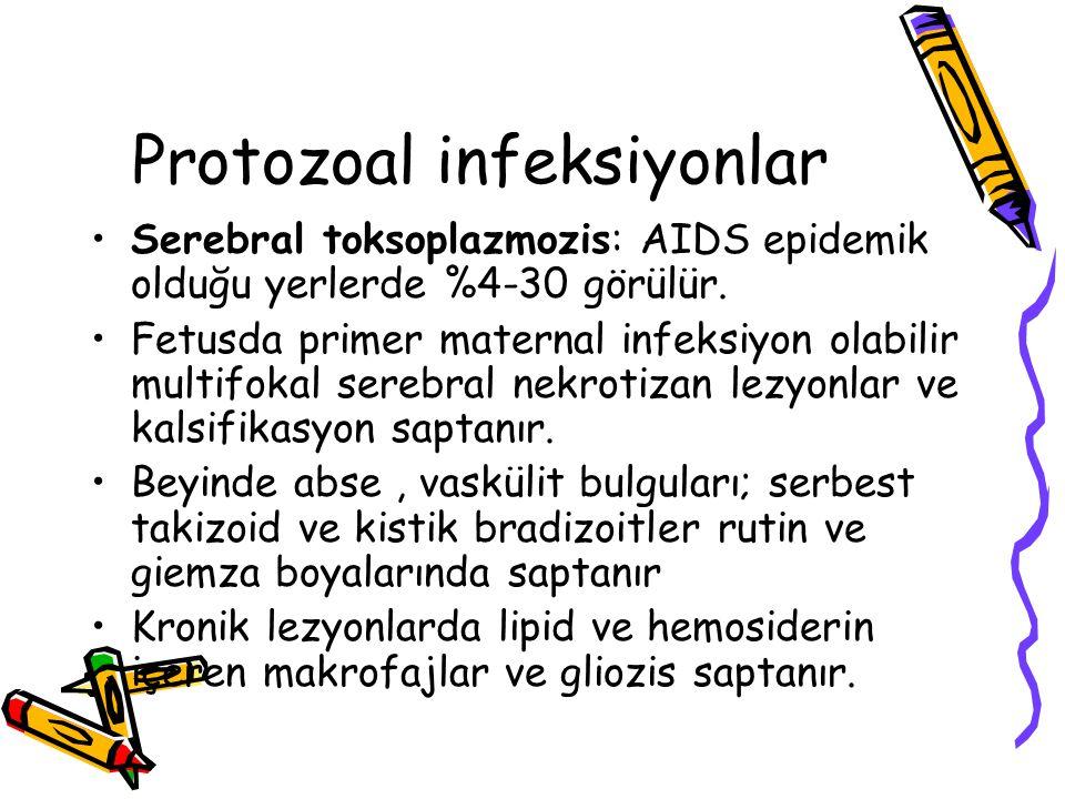Protozoal infeksiyonlar