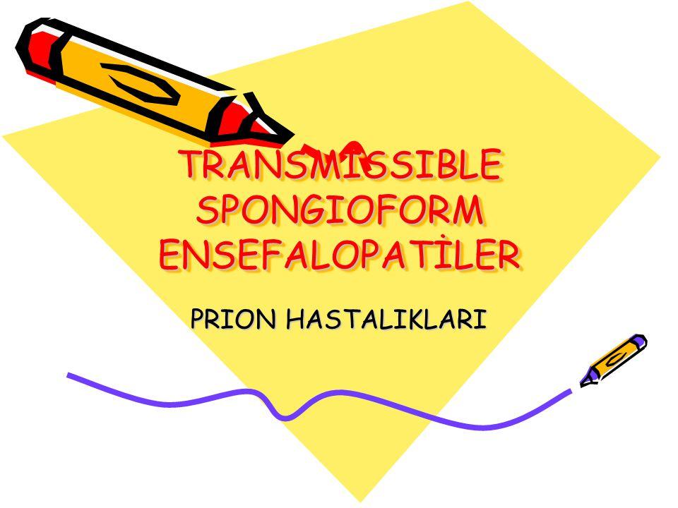 TRANSMISSIBLE SPONGIOFORM ENSEFALOPATİLER