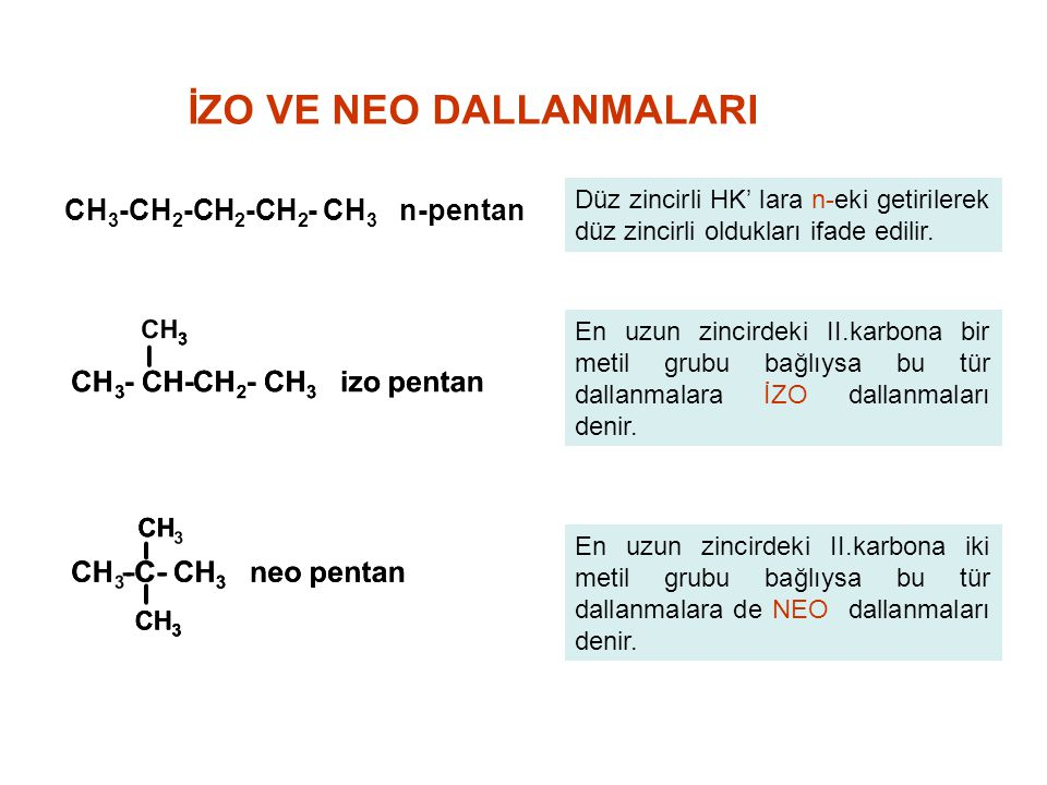 İZO VE NEO DALLANMALARI
