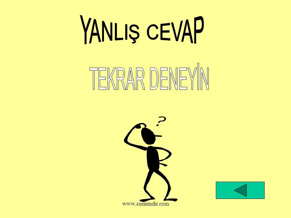 YANLIŞ CEVAP TEKRAR DENEYİN www.sunuindir.com