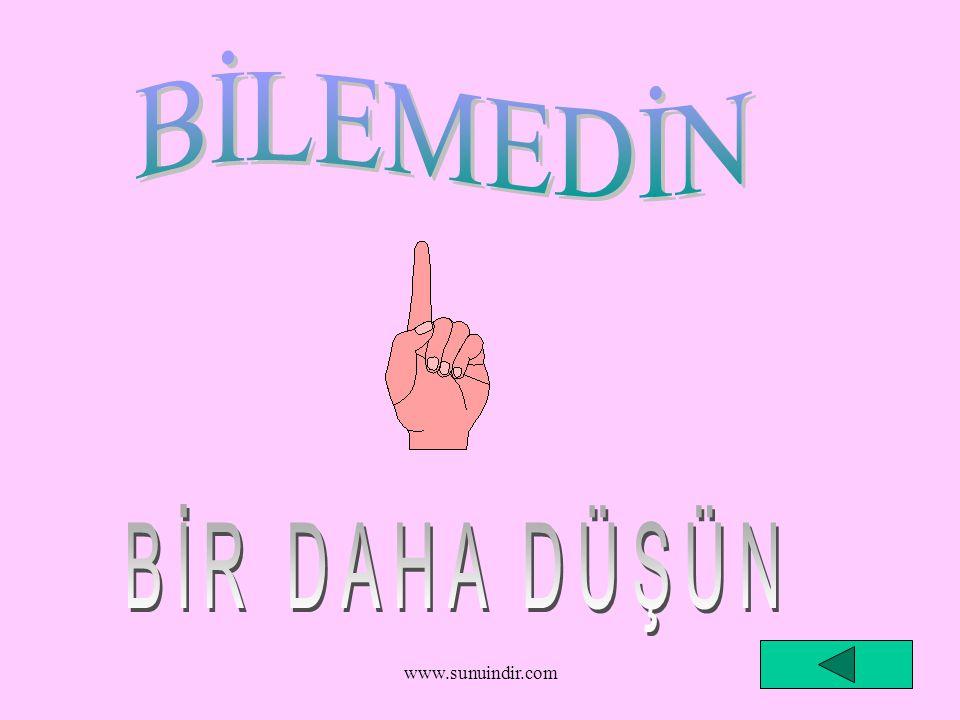 BİLEMEDİN BİR DAHA DÜŞÜN www.sunuindir.com