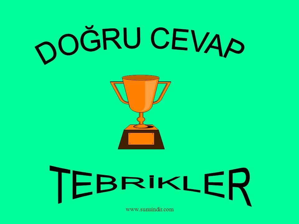 DOĞRU CEVAP TEBRİKLER www.sunuindir.com