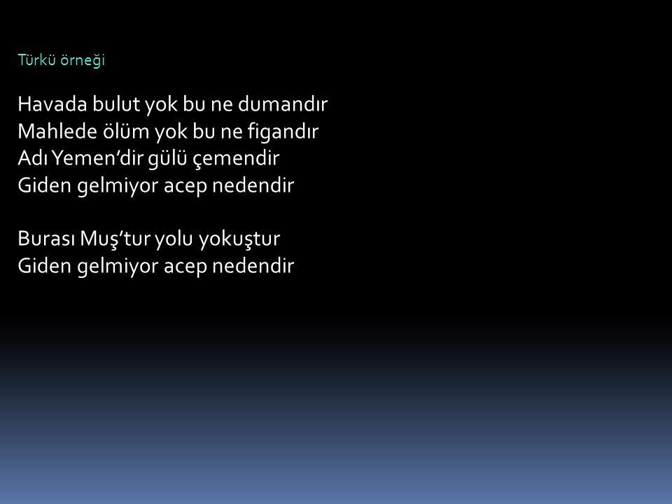 Türkü örneği