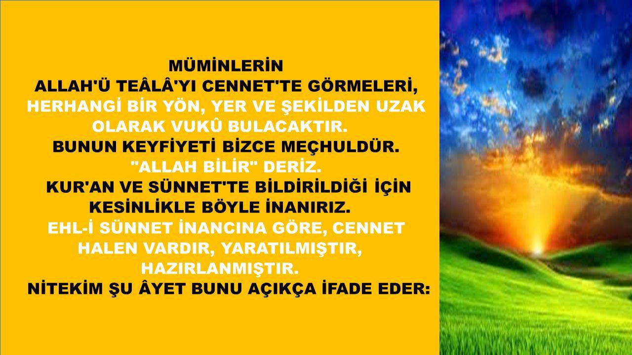 ALLAH Ü TEÂLÂ YI CENNET TE GÖRMELERİ,