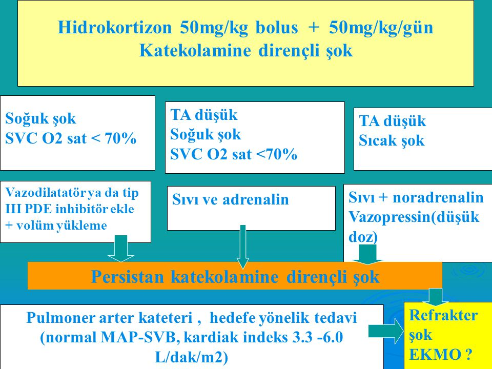 Hidrokortizon 50mg/kg bolus + 50mg/kg/gün Katekolamine dirençli şok