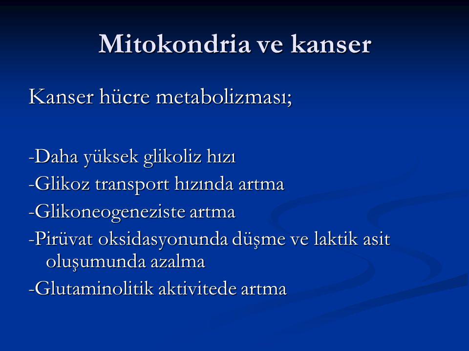 Mitokondria ve kanser Kanser hücre metabolizması;