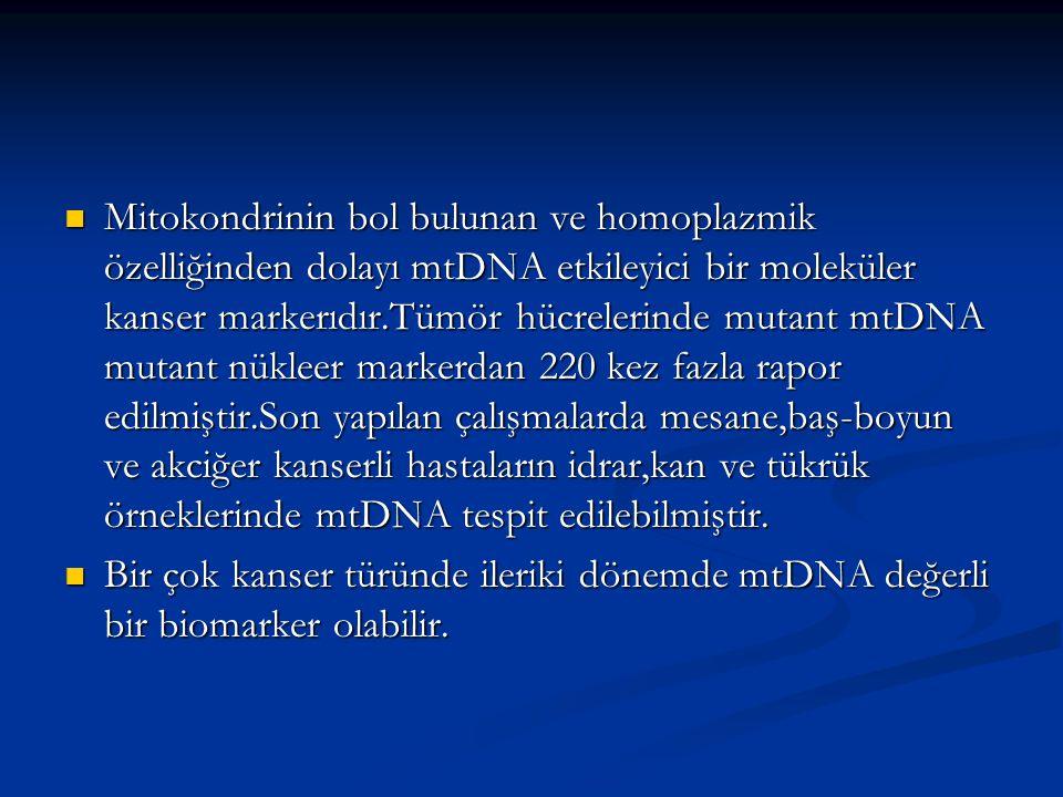 Mitokondrinin bol bulunan ve homoplazmik özelliğinden dolayı mtDNA etkileyici bir moleküler kanser markerıdır.Tümör hücrelerinde mutant mtDNA mutant nükleer markerdan 220 kez fazla rapor edilmiştir.Son yapılan çalışmalarda mesane,baş-boyun ve akciğer kanserli hastaların idrar,kan ve tükrük örneklerinde mtDNA tespit edilebilmiştir.