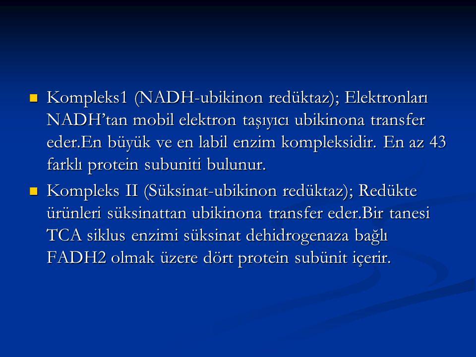 Kompleks1 (NADH-ubikinon redüktaz); Elektronları NADH'tan mobil elektron taşıyıcı ubikinona transfer eder.En büyük ve en labil enzim kompleksidir. En az 43 farklı protein subuniti bulunur.