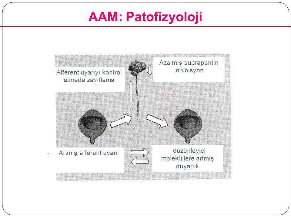AAM: Patofizyoloji Azalmış suprapontin inhibisyon