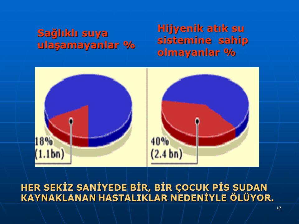 Hijyenik atık su sistemine sahip olmayanlar %