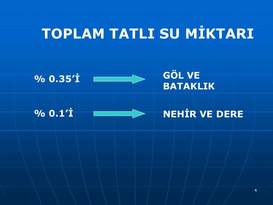 TOPLAM TATLI SU MİKTARI