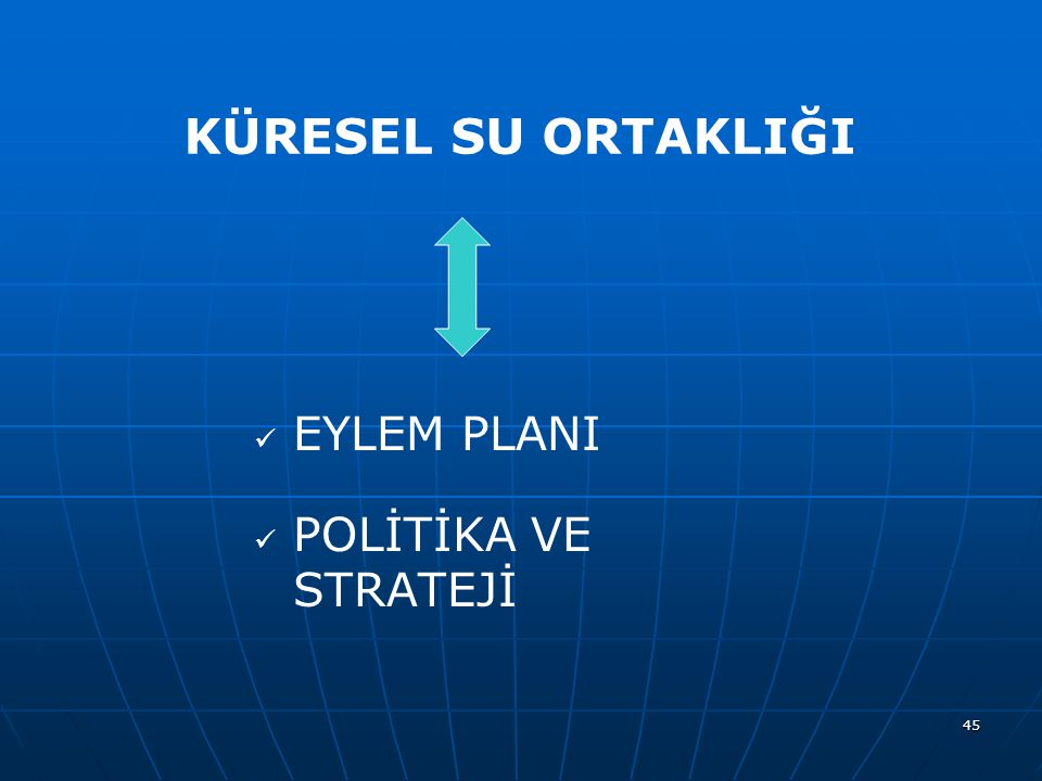 KÜRESEL SU ORTAKLIĞI EYLEM PLANI POLİTİKA VE STRATEJİ