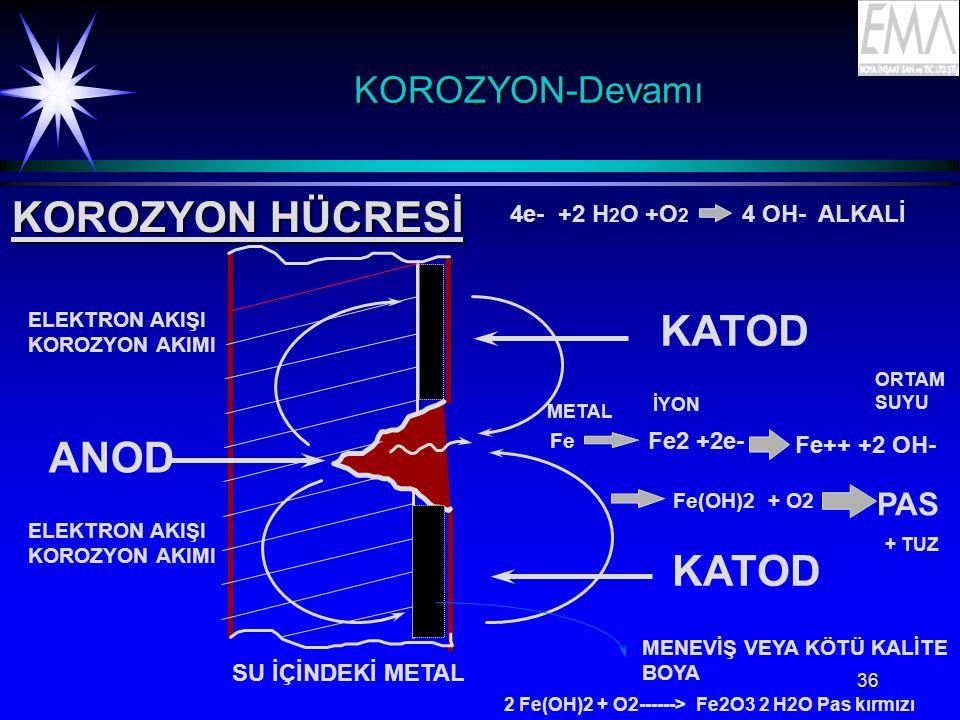KOROZYON HÜCRESİ KATOD ANOD KOROZYON-Devamı PAS
