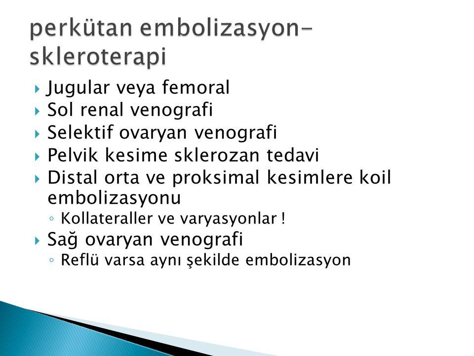 perkütan embolizasyon-skleroterapi