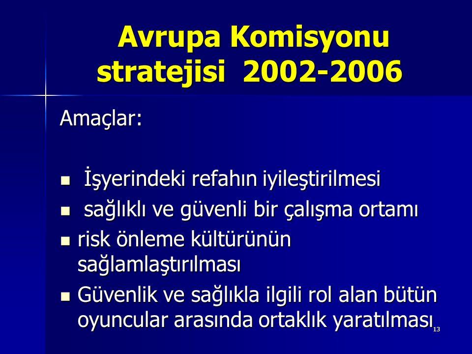 Avrupa Komisyonu stratejisi 2002-2006