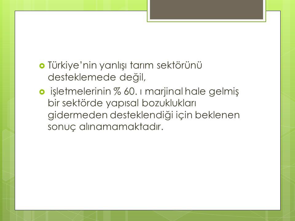 Türkiye'nin yanlışı tarım sektörünü desteklemede değil,