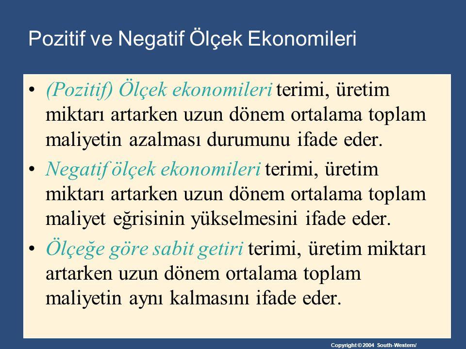 Pozitif ve Negatif Ölçek Ekonomileri
