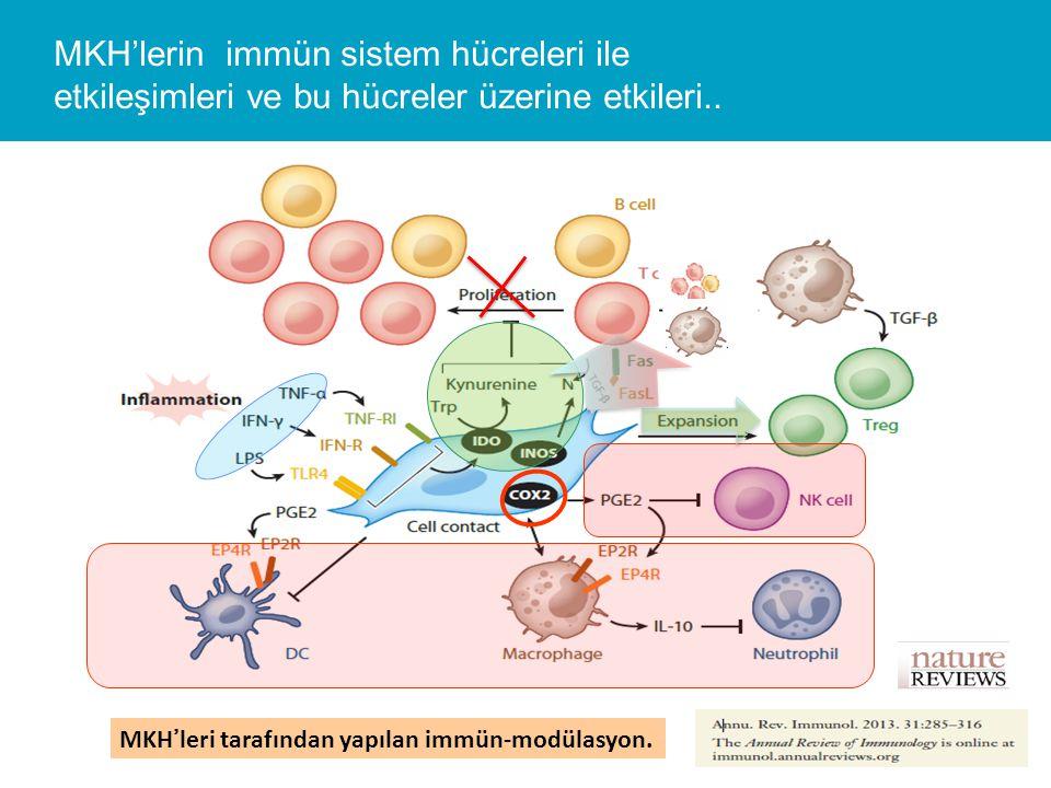 MKH'lerin immün sistem hücreleri ile etkileşimleri ve bu hücreler üzerine etkileri..