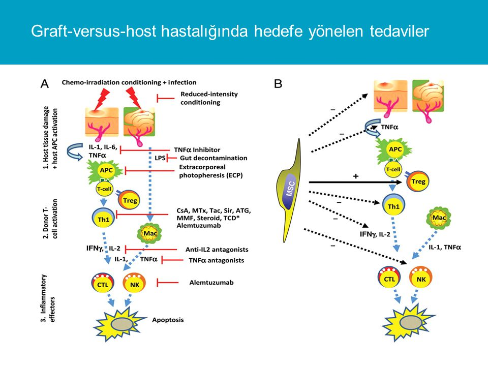 Graft-versus-host hastalığında hedefe yönelen tedaviler