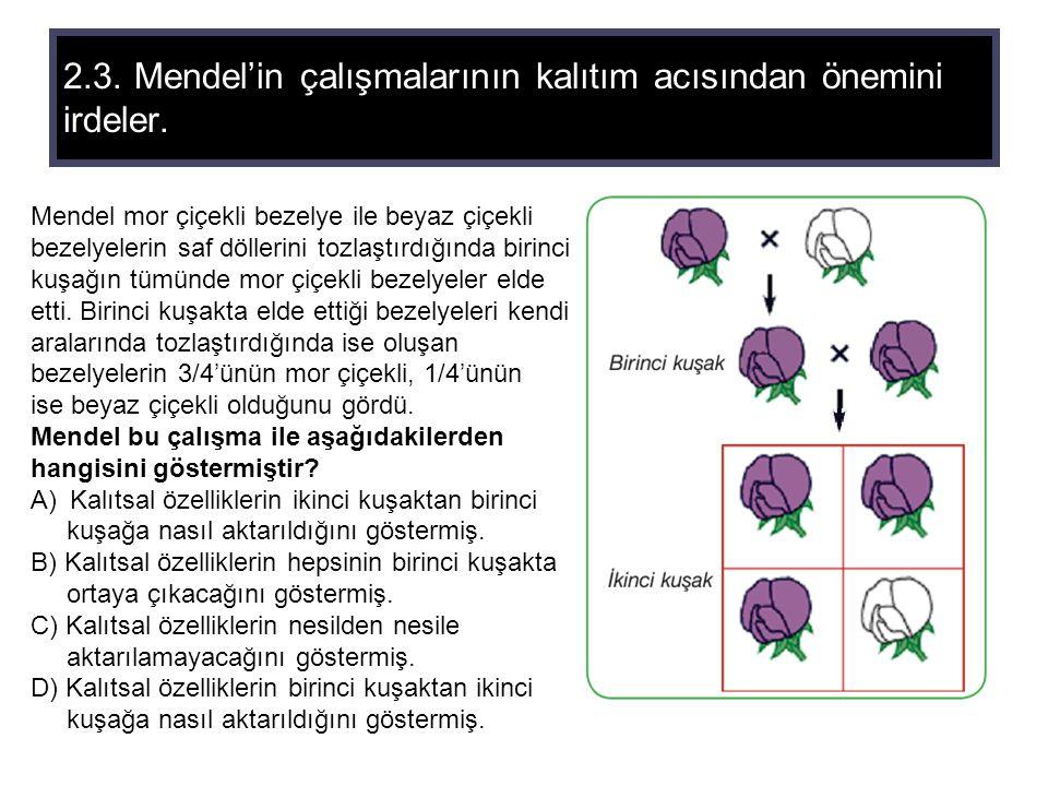 2.3. Mendel'in çalışmalarının kalıtım acısından önemini irdeler.