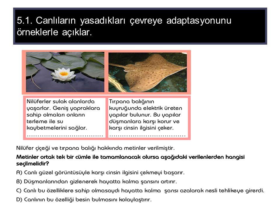 5.1. Canlıların yasadıkları çevreye adaptasyonunu örneklerle açıklar.